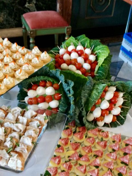 Buffet finger food - catering